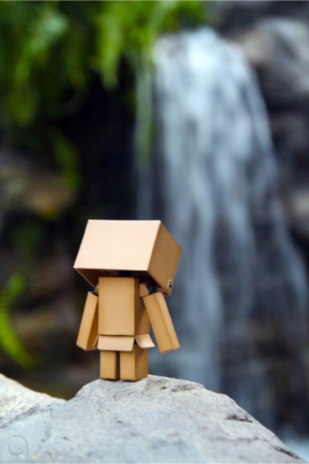 Blog Paper Toy papertoy Danbo back Danbo, le robot en carton...