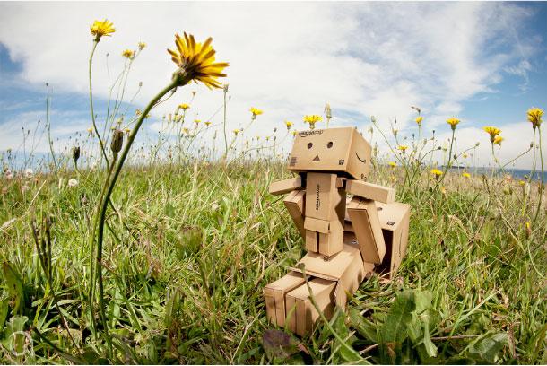 Blog Paper Toy papertoy Danbo grass Danbo, le robot en carton...