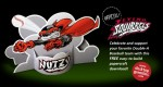 Papercraft officiel des Flying Squirrels
