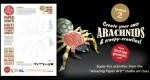 'Arachnids Paper Project'